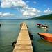 bluefields, jamaica
