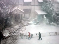 blizzard14