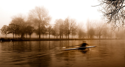 Rowing | by Flying Fin