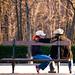 robado en el parque