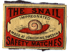 the snail | by Gertie Jaquet