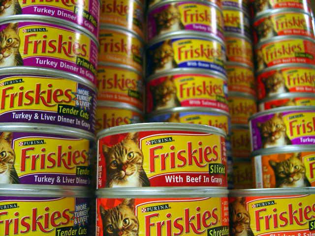 Cheap Cat Food No Byproducts
