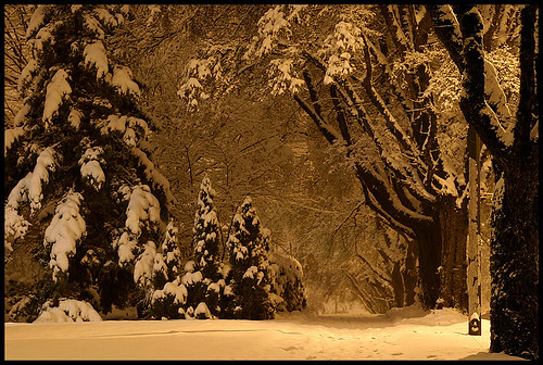 silent night | by ♫ marc_l'esperance