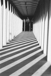 Shadows At The Education Building: Wayne State University--Detroit MI | by pinehurst19475