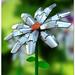 Cyborg_Flower_by_coolscene