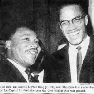 malcolm x and his contributions to african american struggles Malcolm x and marcus garvey contributions of marcus garvey garvey again was always the more hopeful candidate for african american politics malcolm x's.