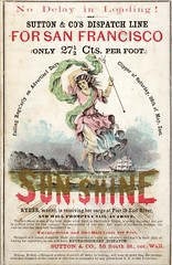SUNSHINE for San Francisco