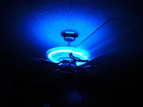 Neon Lit Ceiling Fan Neon Ceiling Fan With Clear Blades
