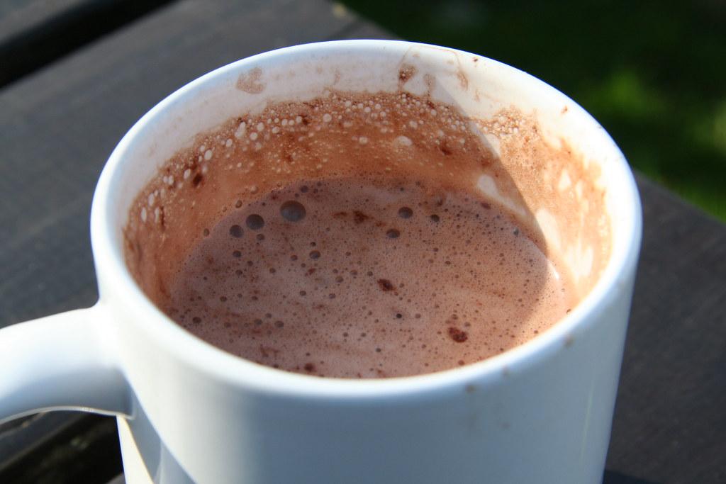Hot Chocolate Mug Cake No Egg