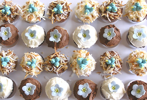 baby shower cupcakes2 | by tam mabley-chaisson