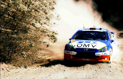 Rally  Mexico | by Alfredo11