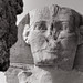 Detail, The Great Sphinx