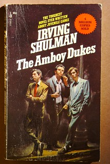 The Amboy Dukes by Irving Shulman | by niznoz