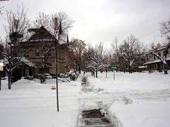 blizzard25