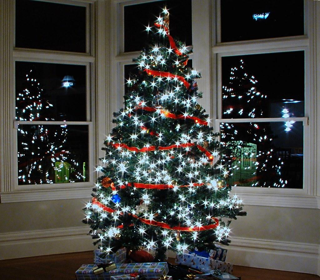 Christmas Tree Location