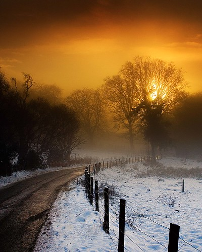 Winter Road 3 | by Colin Campbell (Bruiach)