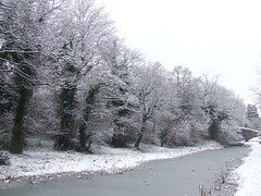 Snow on the canal | by charmingman