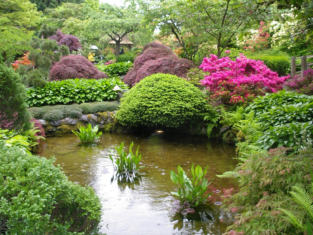 Japanese garden butchart gardens victoria b c pond in for Japanese garden pond design