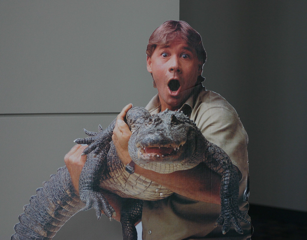 "Steve Irwin, ""Crocodile Hunter - 107.2KB"