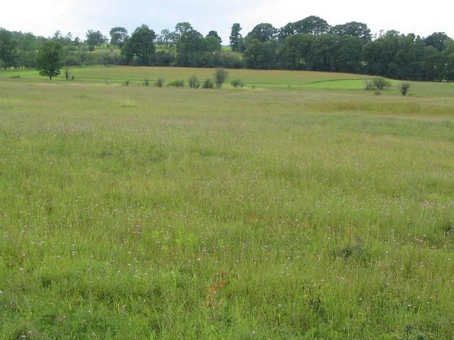 Freeman Farm Overlook Saratoga Battlefield Saratoga Nati Flickr