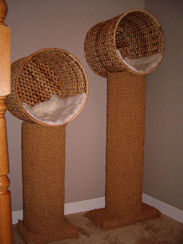 Cat pods my boyfriend made the cats these pods using for Diy cat tower cardboard