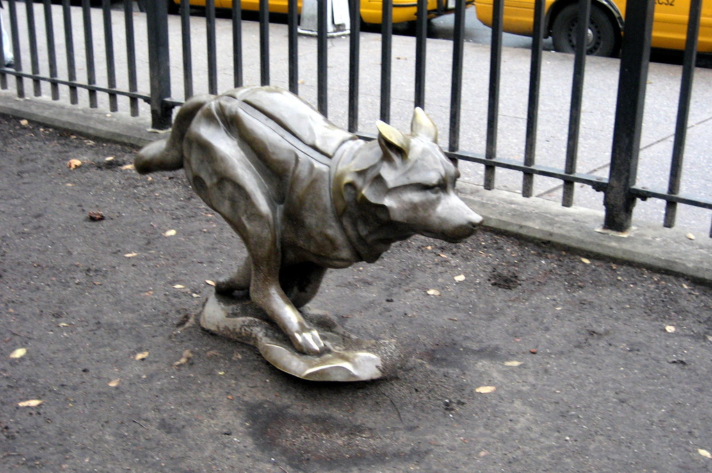 Sled Dog Central Park