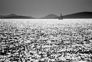 Sailing in a Silver Sea | by Stefano Liboni
