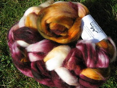 Spunky Eclectic Superwash Merino in Toronto | by mygomi