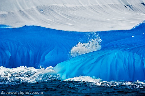 Blue Iceberg, Antarctica | by Dave Walsh Photography