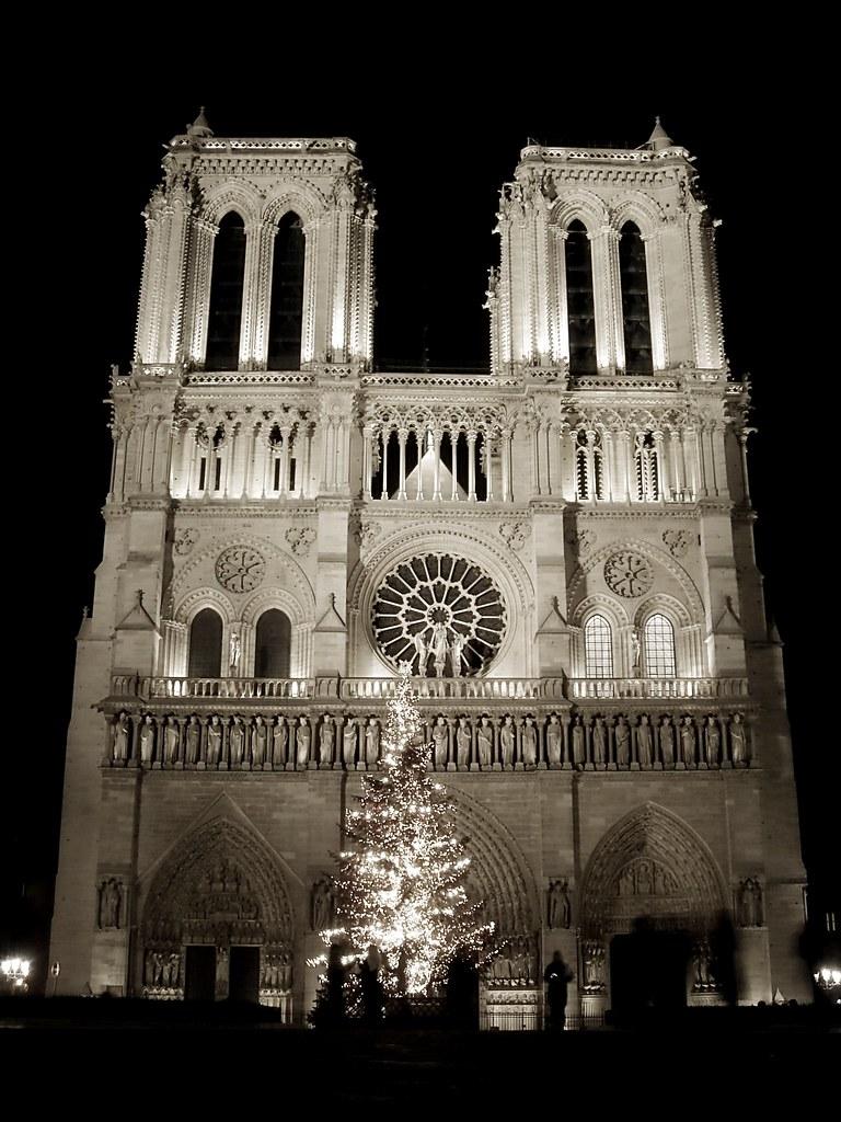 Christmas Tree in front of Notre-Dame de Paris   Alexandre Duret ...
