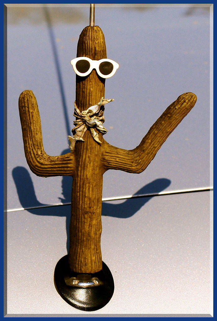 Antenna Dude A Whimsical Cactus Figure With Sunglasses