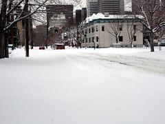 blizzard27