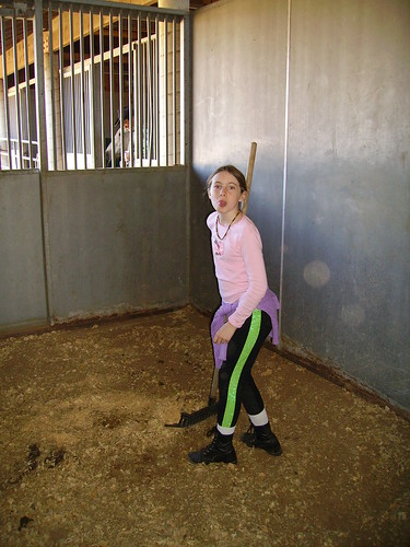 how to clean stable stall