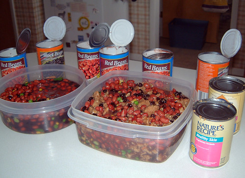 Dog Food Recipe With Shrimp