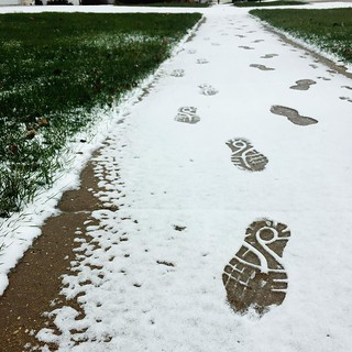 Tracks #shirleyruns #snow #postrun | by shirley319
