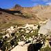 Navajo Basin