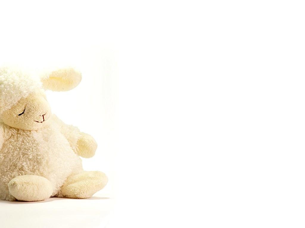 Toy Lamb Wallpaper