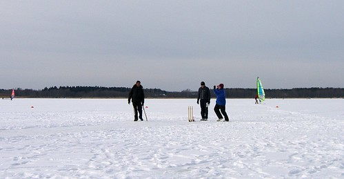 Ice Cricket | by Maniacalrobot