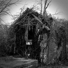 Old Well House | by Cayusa