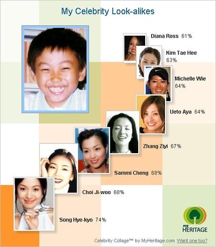 Celebrity collage lookalike