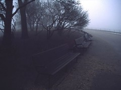 Benches in the mist | by pwiwε