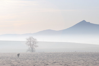 Horse Tree Hill Mist | by Duncan_Smith