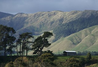 Tararua ranges from Shannon | by RedMGB