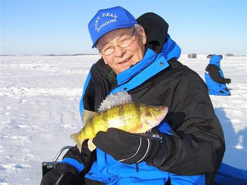Tony with big waubay lake perch perch taken from roy for Waubay fishing report
