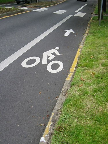 Bike Lane | by Shannon Henry