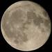 Orange - Moon