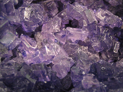 Purple Crystals | by tracky_birthday