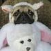 Libby and the Bunny/Bear