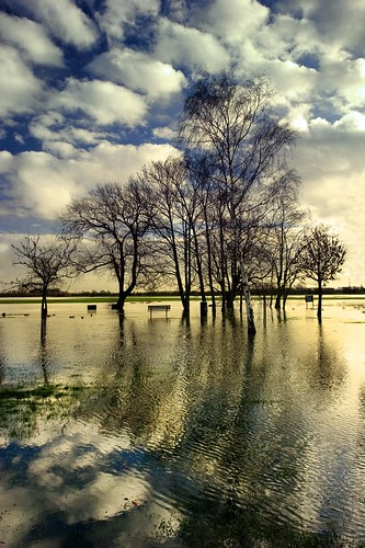 Flooded Fields | by Mute*