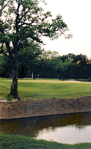 Royal Oaks Country Club Property Owners Association Bylaws Kingsland Tx